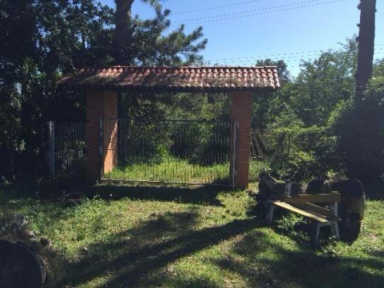 Terreno - Sítio 3 Dorm, Lami, Porto Alegre (99864) - Foto 6