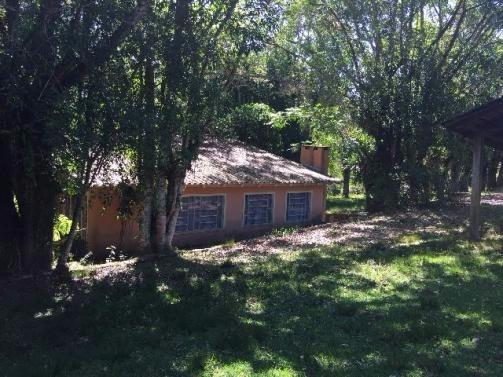 Terreno - Sítio 3 Dorm, Lami, Porto Alegre (99864) - Foto 8