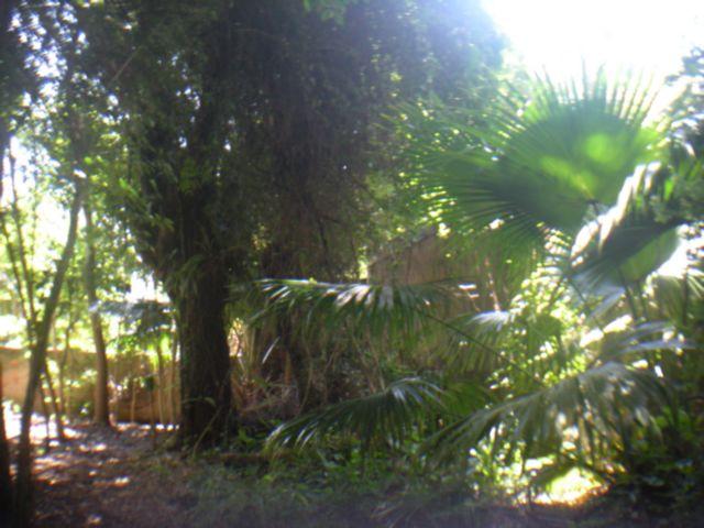 Casa 3 Dorm, Higienópolis, Porto Alegre (20382) - Foto 2