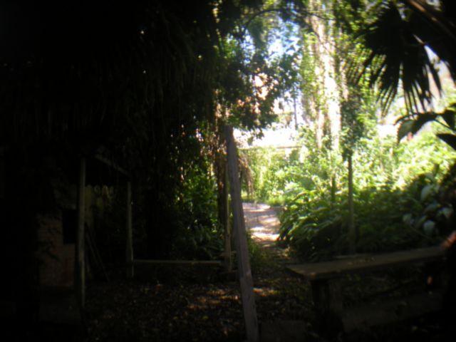 Casa 3 Dorm, Higienópolis, Porto Alegre (20382) - Foto 3