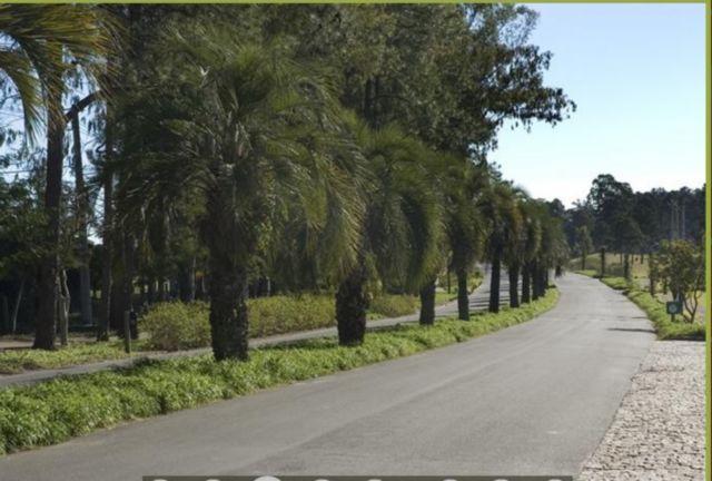 Terraville - Terreno, Belém Novo, Porto Alegre (23805) - Foto 2