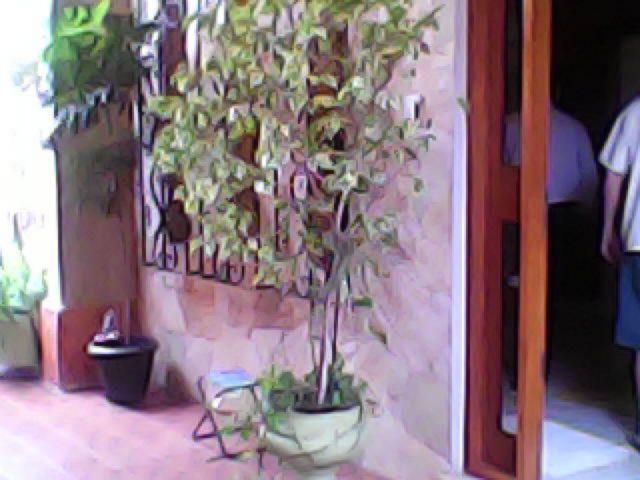 Casa 3 Dorm, Igara, Canoas (42051) - Foto 5