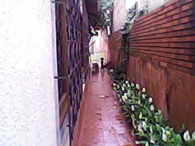 Casa 3 Dorm, Igara, Canoas (42051) - Foto 6