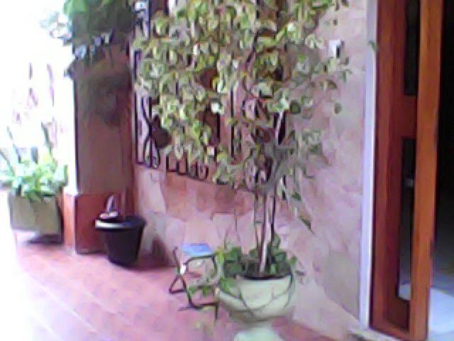 Casa 3 Dorm, Igara, Canoas (42051) - Foto 7