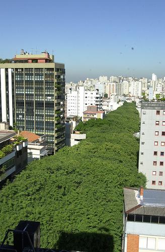 Bureaux La Plus Belle Rue - Sala, Moinhos de Vento, Porto Alegre - Foto 9