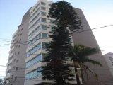 Australian Pine Residence