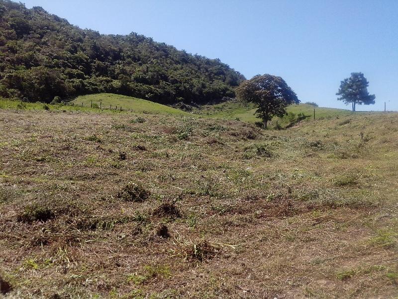 Terreno em Ingleses, Florianopolis - SC