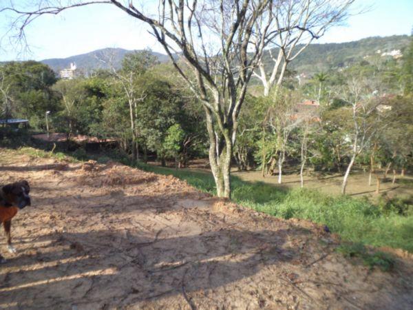 Terreno à venda em Córrego Grande, Florianopolis - SC