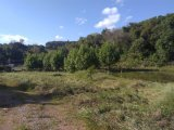 Sítio em Garibaldi | Sitio Gribaldi | Miniatura