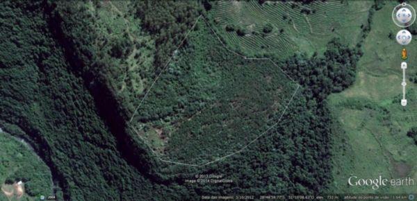 Área Rural em Campestre Da Serra   Chacara Em Campestre Da Serra