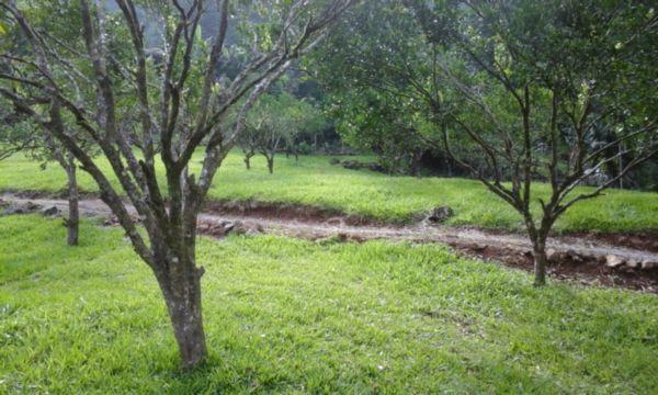 Chácara em Caxias Do Sul | Vila Cristina