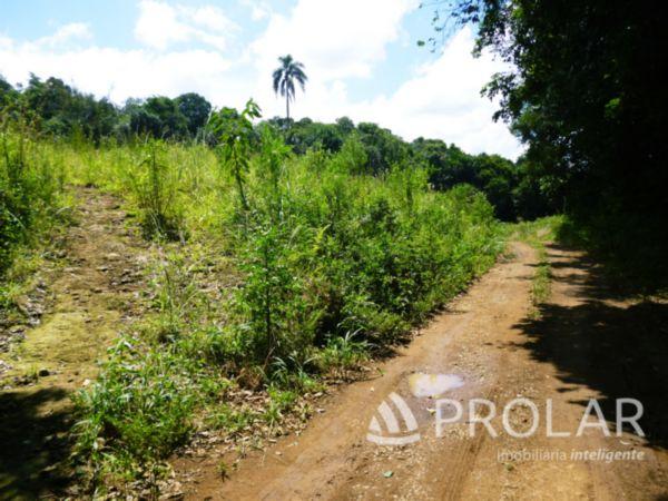 Área Rural em Farroupilha | Área Rural