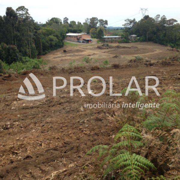 Sítio em Caxias Do Sul | Sitio