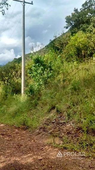 Área Rural em Bento Gonçalves | Área Rural