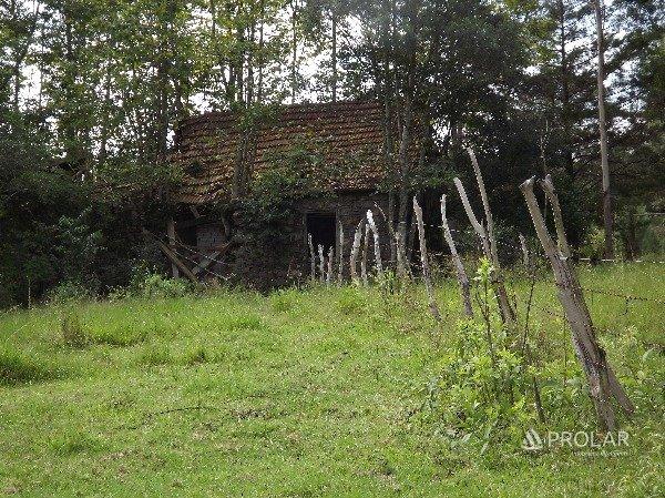 Área em Caxias Do Sul | Área