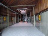 Loja Térrea em Caxias Do Sul | Comercial Br | Miniatura