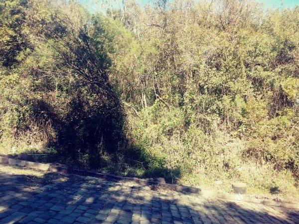 Loteamento Parque Piemonte - Foto 1