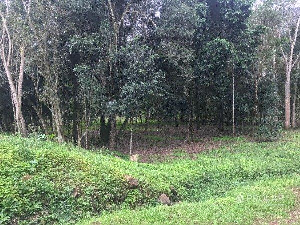 Terreno em Sao Vendelino | Terrenos