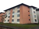 REF. 7460 -  Sao Jose Dos Pinhais - Rua  Octavio Cim, 1235