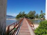 Ilha Praia da Saudade - Coqueiros (4)