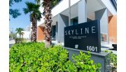 Skyline Intelligent Business