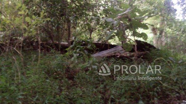 Terreno em Caxias Do Sul | Terreno Na Rua Basilio Onzi