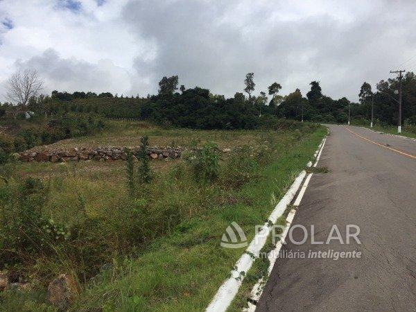 Terreno em Bento Goncalves   Lotes Vale dos Vinhedos