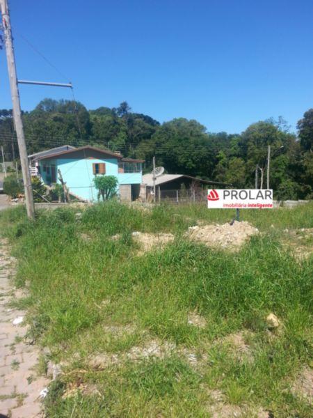 Terreno em Caxias Do Sul   Terrenos