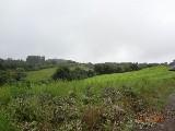 Área Rural em Caxias Do Sul | Fazenda Em Santa Lucia Do Piai | Miniatura