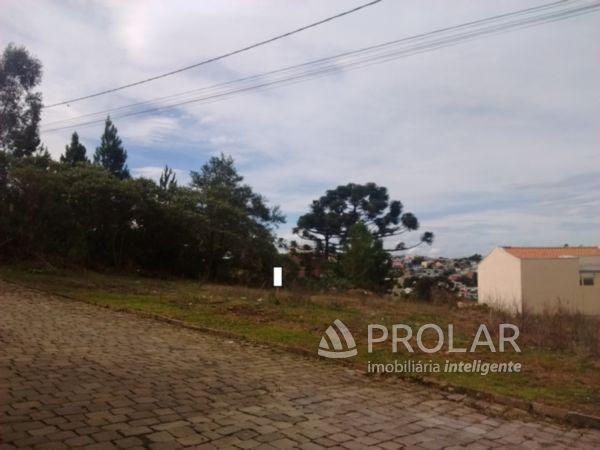 Terreno em Caxias Do Sul | Terreno No São Caetano