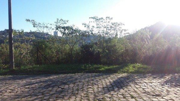 Terreno em Caxias Do Sul | Loteamento Tres Figueiras