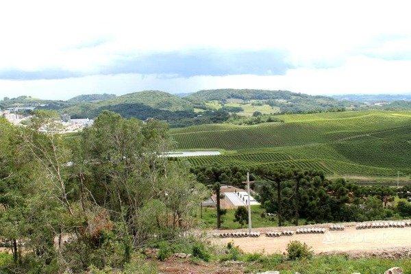 Terreno em Flores Da Cunha | Villa Toscana