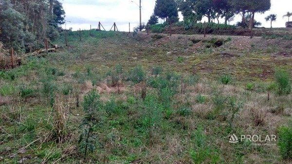 Terreno em Bento Goncalves | Terrenos