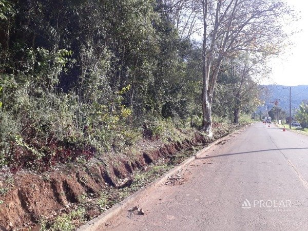 Terreno em Santa Tereza | Terrenos