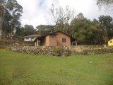 REF. 6917 -  São José Dos Pinhais -   Carlos Kusma, 00