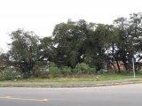 REF. 7417 -  São José Dos Pinhais - Avenida  Constante Moro Sobrinho, 00