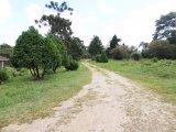 REF. 8151 -  Quatro Barras - Estrada  Da Graciosa, 54