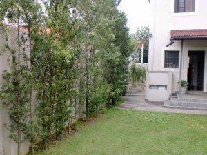 Casa Reformada Bem Localizada no Jardim América